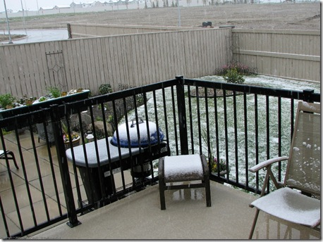 Calgary SNOW June 6 2009_2